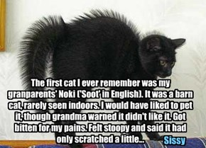 The first cat I ever remember was my granparents' Noki ('Soot' in English). It was a barn cat, rarely seen indoors. I would have liked to pet it, though grandma warned it didn't like it. Got bitten for my pains. Felt stoopy and said it had only scratched