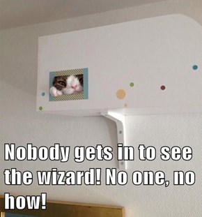 Nobody gets in to see the wizard! No one, no how!