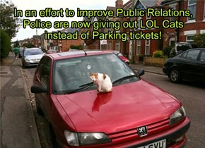 In an effort to improve Public Relations, Police are now giving out LOL Cats instead of Parking tickets!