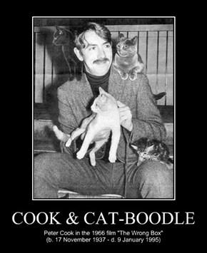 COOK & CAT-BOODLE