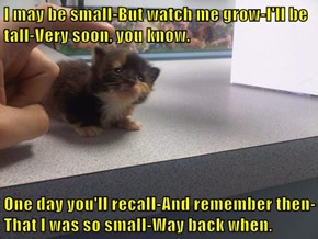 I may be small-But watch me grow-I'll be tall-Very soon, you know.  One day you'll recall-And remember then-That I was so small-Way back when.