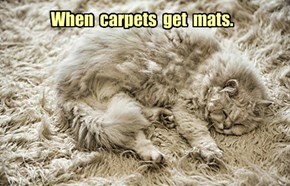 When  carpets  get  mats.