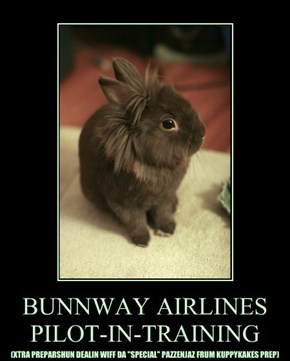 BUNNWAY AIRLINES PILOT-IN-TRAINING