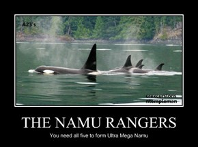 THE NAMU RANGERS