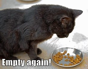 Empty again!
