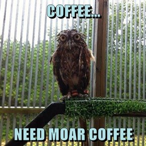 COFFEE...  NEED MOAR COFFEE