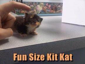 Fun Size Kit Kat