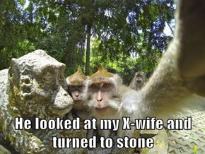 He looked at my X-wife and turned to stone