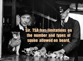 Sir,  TSA  has  limitations  on the  number  and  types  of squee  allowed on  board.