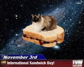 November 3rd - International Sandwich Day!
