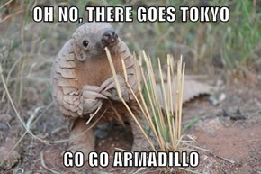OH NO, THERE GOES TOKYO  GO GO ARMADILLO