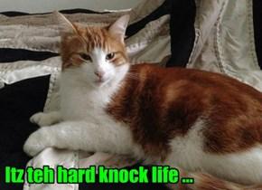Itz teh hard knock life ...