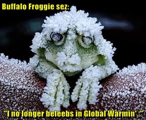 "Buffalo Froggie sez:   ""I no longer beleebs in Global Warmin'.."""