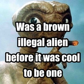 literal illegal alien