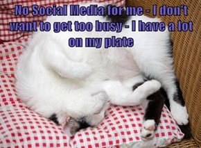 No Social Media for me - I don't want to get too busy - I have a lot on my plate