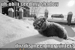 uh-oh...i seed my shadow  duz dis meen mor winter?
