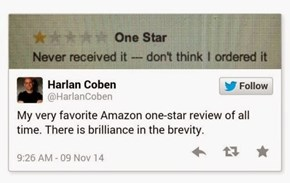 Brilliance in Product Reviews