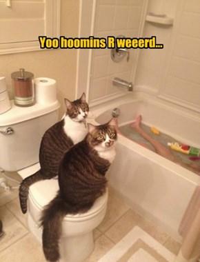 Yoo hoomins R weeerd...
