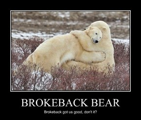 BROKEBACK BEAR