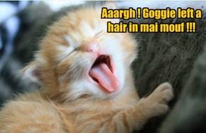 Aaargh ! Goggie left a hair in mai mouf !!!