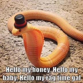 Hello my honey, Hello my baby, Hello my rag time gal