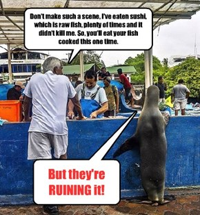 Next time I go out to eat, I'm leaving my seal at home!