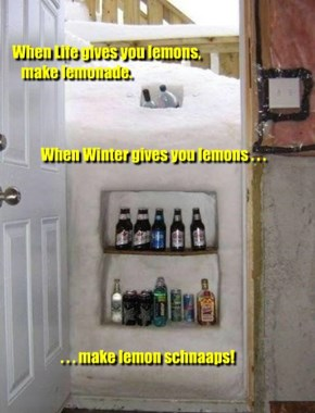 "Brings new meaning to ""Serve Chilled"""