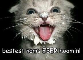 bestest noms EBER hoomin!