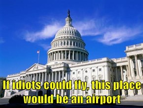 If idiots could fly, this place would be an airport