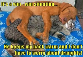 It's a win - win situation...  He keeps my back warm and I don't have to worry about draughts!