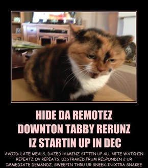 HIDE DA REMOTEZ  DOWNTON TABBY RERUNZ  IZ STARTIN UP IN DEC