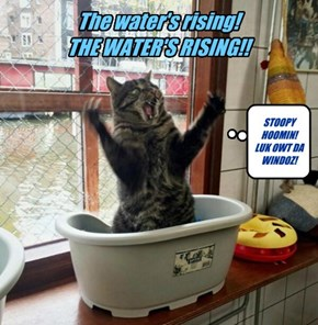 The water's rising!  THE WATER'S RISING!!