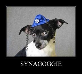 SYNAGOGGIE