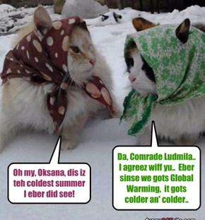 Two Russian kitties habs a conversashun an' makes an important observashun!