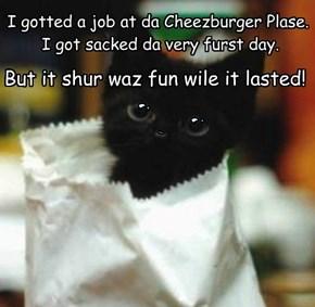 I gotted a job at da Cheezburger Plase.  I got sacked da very furst day.