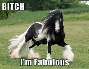 b*tch  I'm Fabulous