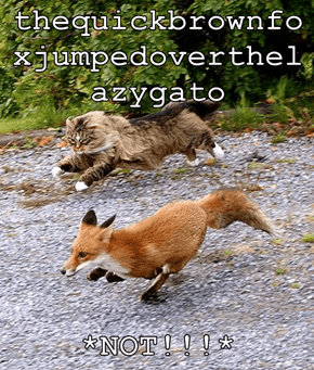 thequickbrownfoxjumpedoverthelazygato  *NOT!!!*