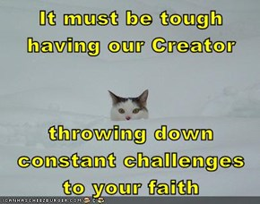 It must be tough having our Creator  throwing down constant challenges to your faith