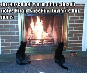 Intransed bai warm Chloe dusn't notys Hiram sneeking towards hur noms.