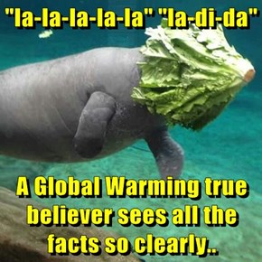 """la-la-la-la-la"" ""la-di-da""  A Global Warming true believer sees all the facts so clearly.."