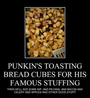 PUNKIN'S TOASTING BREAD CUBES FOR HIS FAMOUS STUFFING