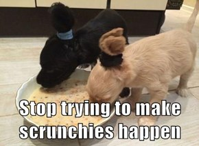 Stop trying to make scrunchies happen