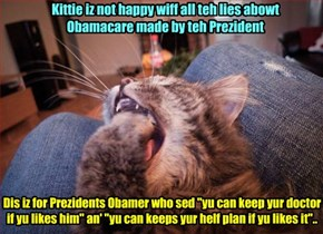Kittie makes a protest abowt Obamacare..