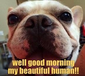Mornin'!!