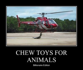 CHEW TOYS FOR ANIMALS