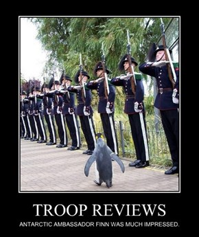 TROOP REVIEWS