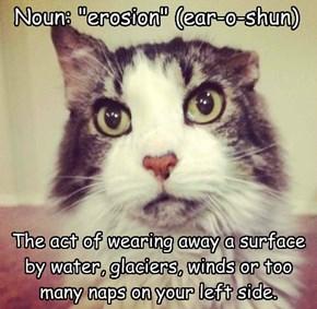 "Noun: ""erosion"" (ear-o-shun)"