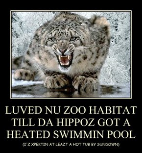 LUVED NU ZOO HABITAT TILL DA HIPPOZ GOT A HEATED SWIMMIN POOL