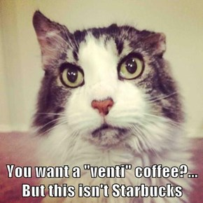 "You want a ""venti"" coffee?...                                          But this isn't Starbucks"