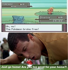 We All Know the Feel of Throwing Poké Ball After Poké Ball